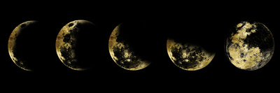 Golden Moon Eclipse Affiches
