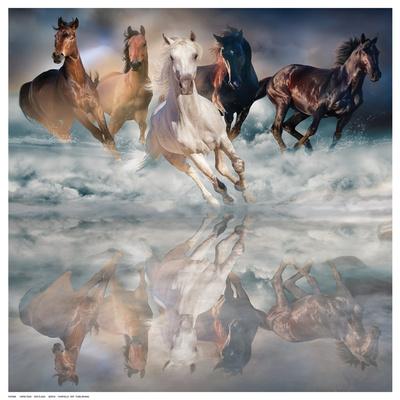 Herd Run Posters by  Svetlana