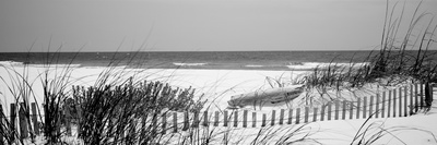 Fence on the Beach, Bon Secour National Wildlife Refuge, Gulf of Mexico, Bon Secour Fotografisk tryk af Panoramic Images,