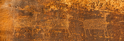 Petroglyphs on Sandstone, Arches National Park, Utah, USA Photographic Print by  Panoramic Images