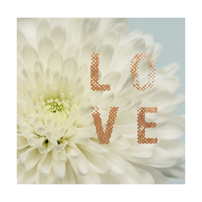 Love Flower Posters by Julie Greenwood