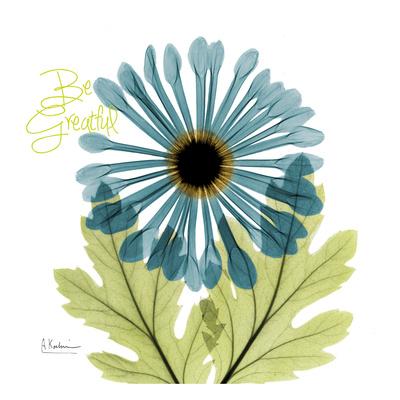 Greatful Chrysanthemum H68 Art by Albert Koetsier