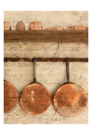 Copper 2 Prints by Kimberly Allen