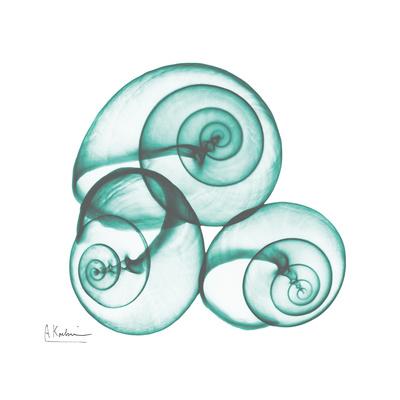Shamrock Sky Snails 2 Art by Albert Koetsier