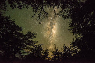 The Milky Way Galaxy Above a Forest in Los Glaciares National Park Photographic Print by Jordi Busque