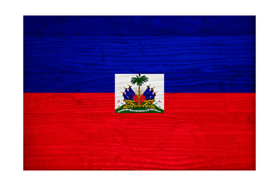 Haiti Flag Design with Wood Patterning - Flags of the World Series Posters by Philippe Hugonnard