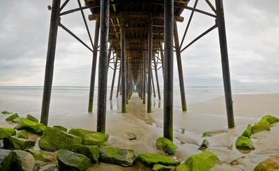 Under Oceanside Pier Posters by Lee Peterson