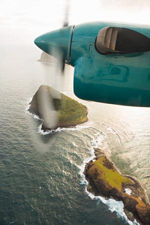 Flying Over I Poster by Karyn Millet