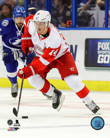 Gustav Nyquist 2016-17 Action Photo