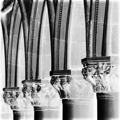 X-ray - Architectural I Giclee Print by Tony Koukos