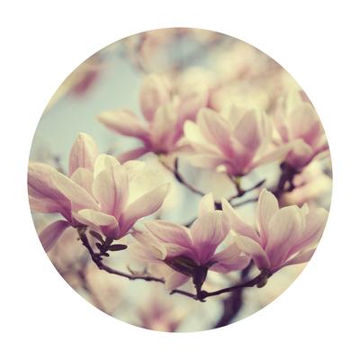 Spring Dream - Sphere Giclee Print by Irene Suchocki