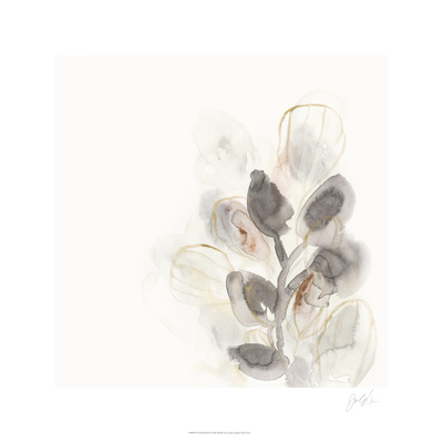 Seed Pod II Limited Edition by June Erica Vess