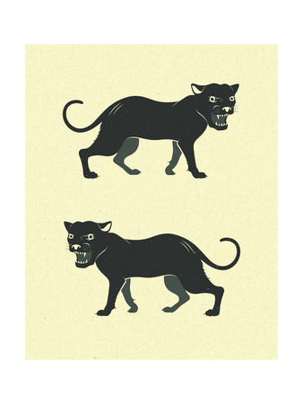 Panthers Prints by Jazzberry Blue