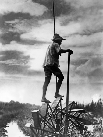 Japanese Rice Farmer on a Water Treadmill, 1934 Photographic Print by  Süddeutsche Zeitung Photo