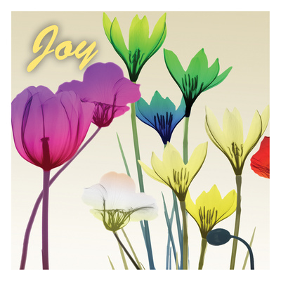 Floral Calm Pop Joy Art by Albert Koetsier