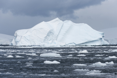 An Iceberg Floats in Fournier Bay, Antarctica Photographic Print by Jeff Mauritzen