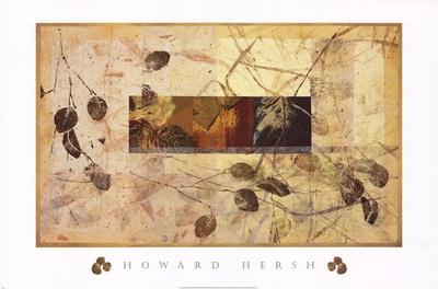 Field Work II Posters by Howard Hersh