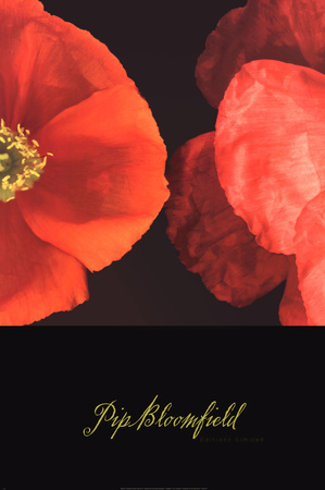 Dual Poppy Right Poster by Pip Bloomfield