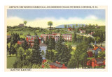 Carnegie Hall, Greenbrier College, Lewisburg, West Virginia Art Print