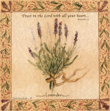 Lavender Posters by Carolyn Shores-Wright