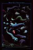 Deep Sea Creatures Wall Poster