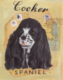 Cocker Spaniel Art by Claire Pavlik Purgus