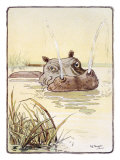 The Spoutting Hippo Giclee Print