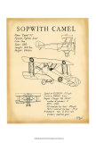 Sopwith Camel Posters by Tara Friel
