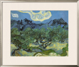 Landscape with Olive Trees Prints by Vincent van Gogh