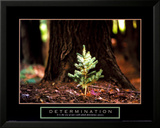 Determination - Little Pine Prints