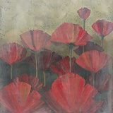 Poppies I Print by Robert Holman