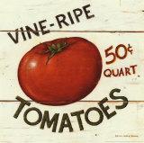 Tomates maduros en rama Láminas por David Carter Brown