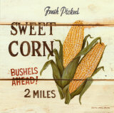 Fresh Picked Sweet Corn Print by David Carter Brown