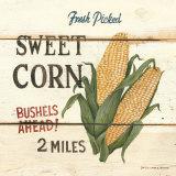 David Carter Brown - Fresh Picked Sweet Corn Obrazy