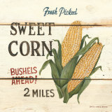 Fresh Picked Sweet Corn Prints by David Carter Brown