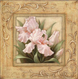 Pretty in Pink Irises Print by Igor Levashov