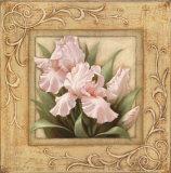 Pretty in Pink Irises Print by Igor Levashov