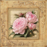 Pretty in Pink Peonies Posters by Igor Levashov