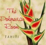 Polynesischer Raum Poster von Paula Scaletta