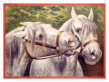 Livestock Horse Fair Giclee Print