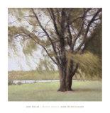 Lakeside Trees II Posters by John Folchi
