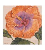 Island Hibiscus II Prints by Judy Shelby