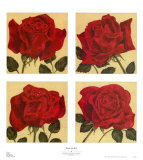 Roses are Red Prints by Judy Shelby