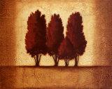Embossed Cypress Prints by  Xavier