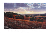 Smithson Valley Sunset Posters by Greg Glowka