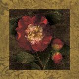Red Camellias I Posters af John Seba