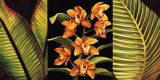 Orange Orchids and Palm Leaves Posters by Rodolfo Jimenez