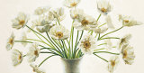 Bouquet di Anemoni Plakater af Eva Barberini