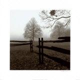 Zaun im Nebel Kunstdrucke von Harold Silverman
