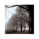 Mañana en blanco y negro Reproducción por Harold Silverman